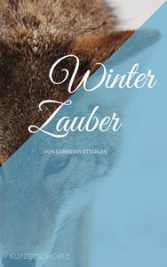 winterzauber_christian_etterlen_web